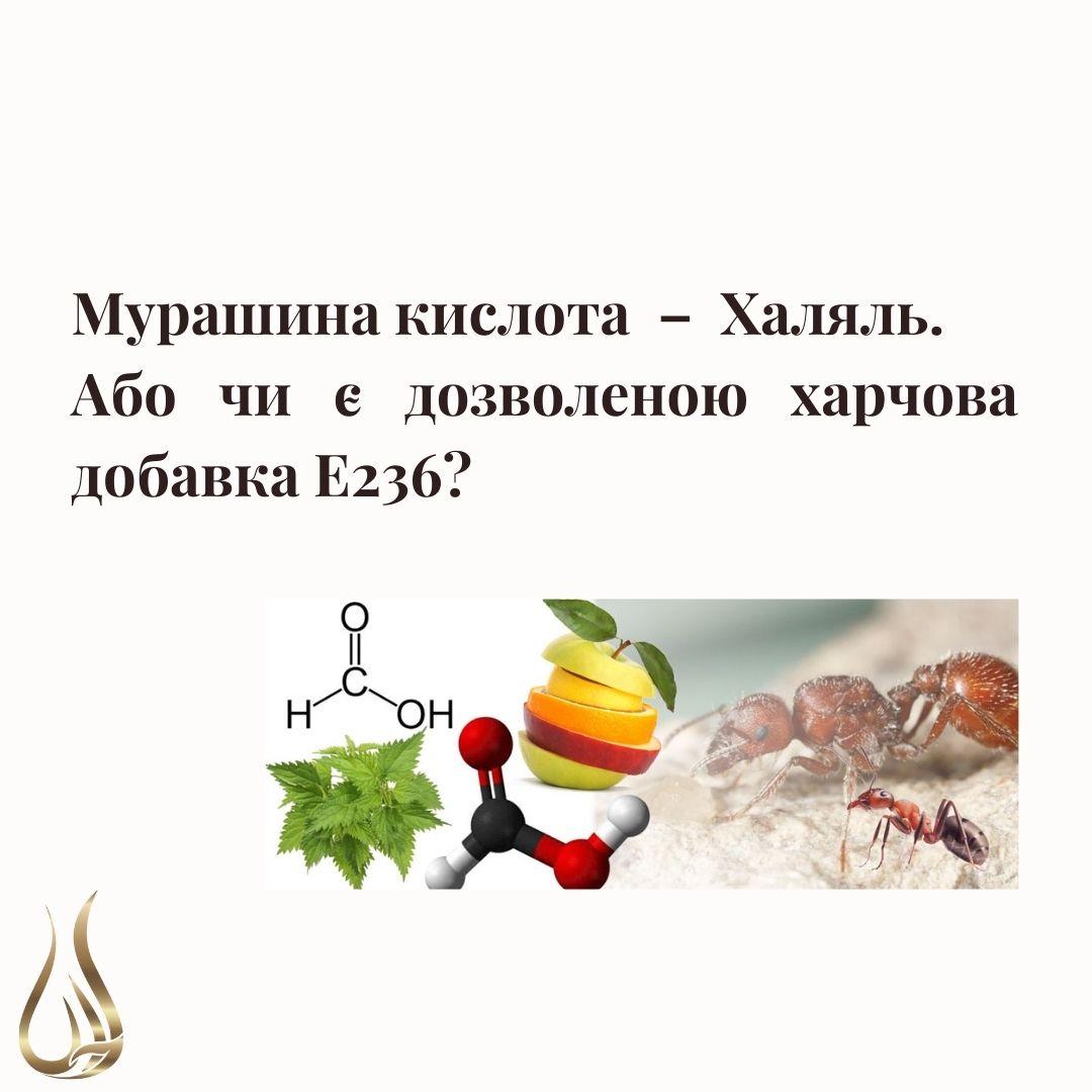 Харчова добавка Е236