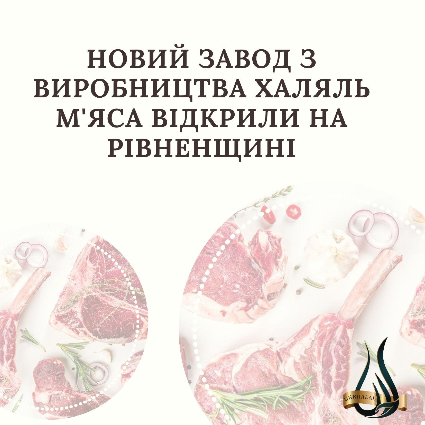 VIII Міжнародна Виставка OIC Halal Expo»